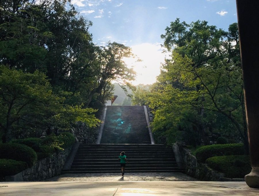 Une semaine au Japon