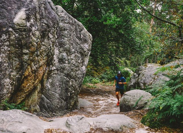 Trail-running Fontainebleau